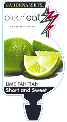 PICK-N-EAT-LIME-TAHITIAN