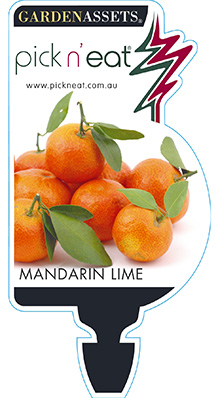 PICK-N-EAT-MANDARIN-LIME