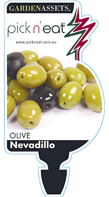 PICK-N-EAT-OLIVE-NEVADILLO