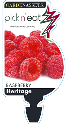 PICK-N-EAT-RASPBERRY-HERITAGE
