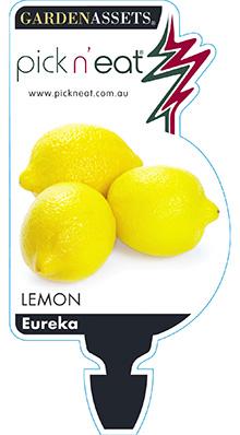 PICK-N-EAT-LEMON-EUREKA