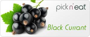pick-n-eat-blackcurrant
