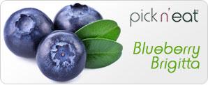 pick-n-eat-blueberry-brigitta