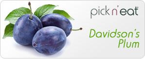 pick-n-eat-davidsonsplum