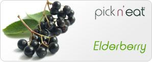pick-n-eat-elderberry