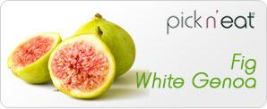 pick-n-eat-fig-whitegenoa