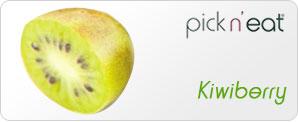 pick-n-eat-kiwiberry