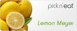 pick-n-eat-lemon-meyer