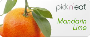 pick-n-eat-mandarin-lime