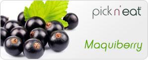 pick-n-eat-maquiberry